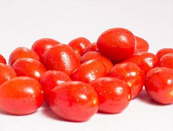 Burpee Tomatoes