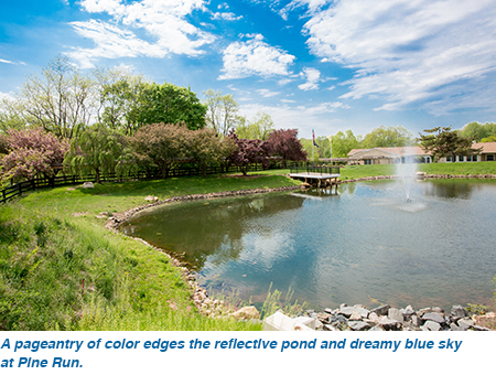 A pageantry of color edges the reflective pond and dreamy blue sky at Pine Run.