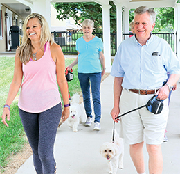 Exercise while walking your dog!
